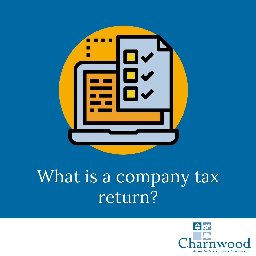 What is a company tax return?